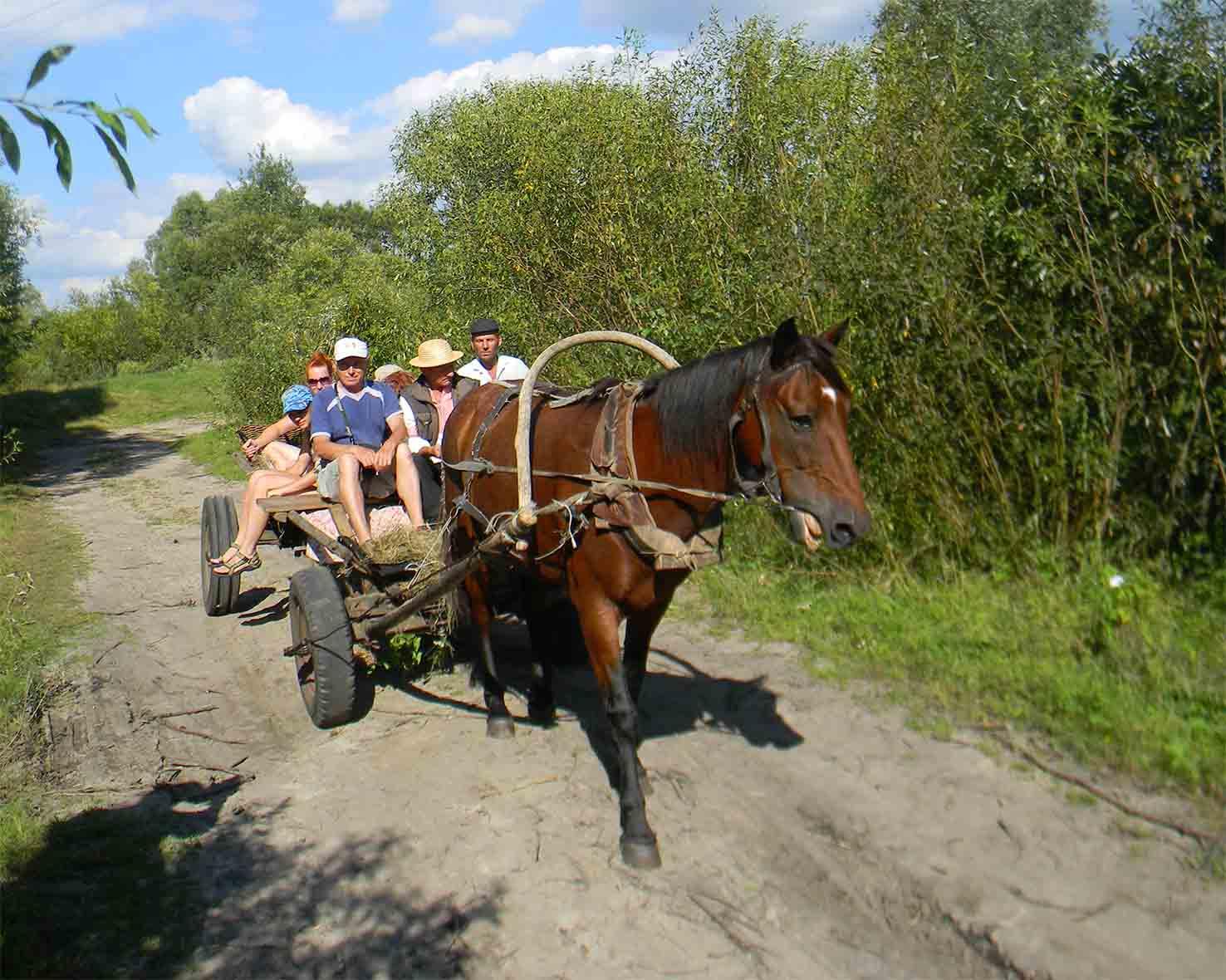 Radreise Polen, Weißrussland, BWRI, Fot. 6
